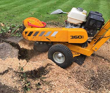 small-stump-grinder